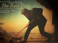 rain dogs presstiz