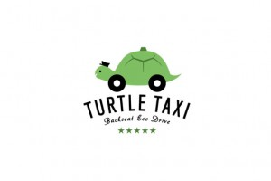 turtle_taxi