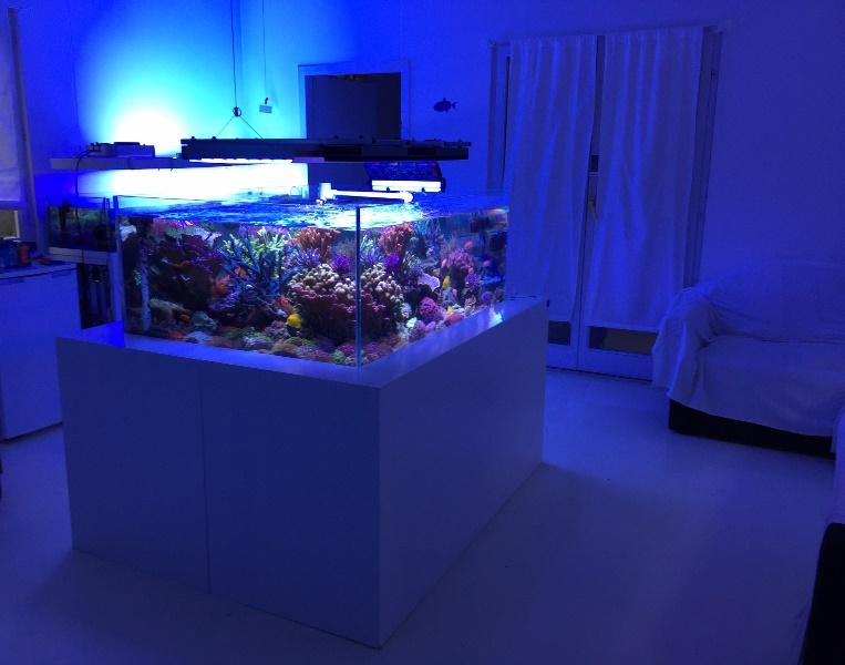 Reefroom studio Beograd (5)