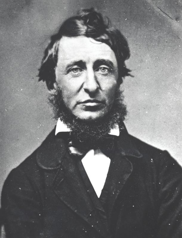 Henri Dejvid Toro