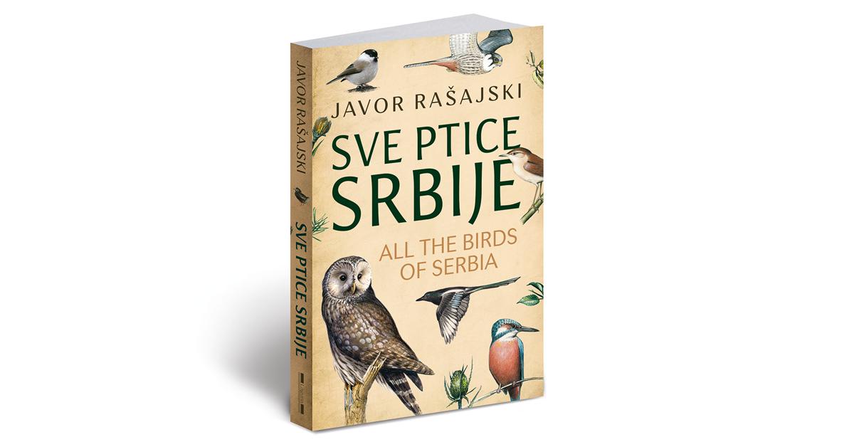 Sve ptice Srbije - Javor Rasajski (1)