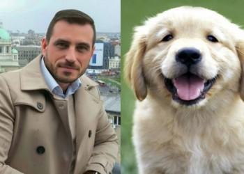 Darko Drobnjak - veterinar