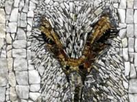 Milojević Sara, Iz serije Portreti ptica I - Copy