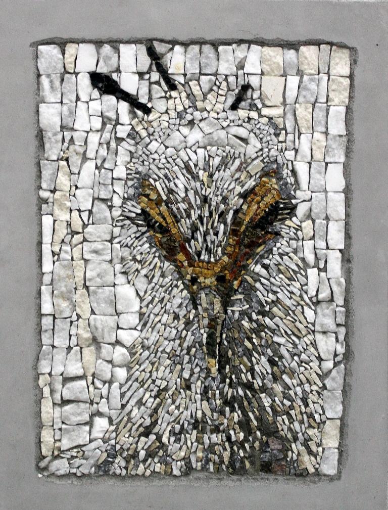 Milojević Sara, Iz serije Portreti ptica I