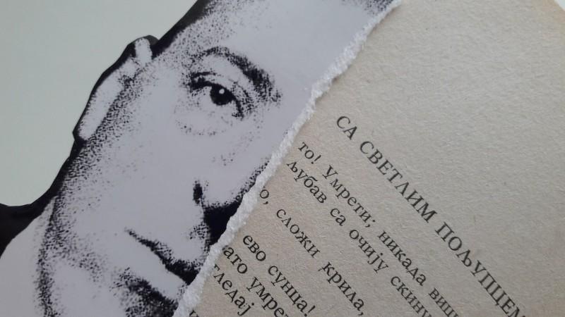 Rastko Petrovic - Međunarodni Beogradski festival poezije i knjige Trgni se! Poezija! (3)